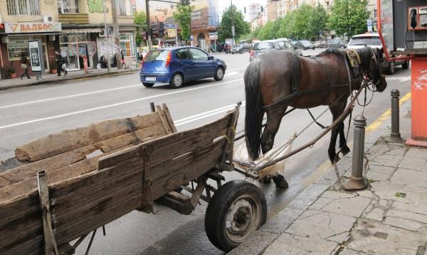 Полицаи с внезапни проверки: Дирят каруци из София