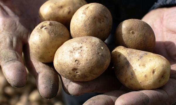 100 лв. глоба за мъж, замерял друг с картофи, лук и буркани