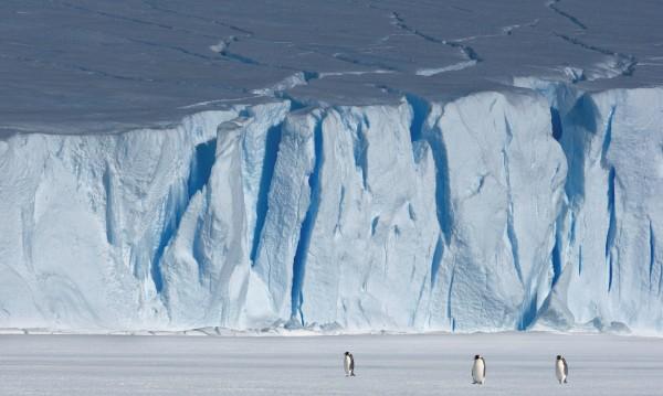 Антарктида - руски център за спътникови данни