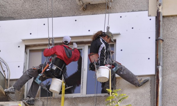 Защитени прилепи - в капан, умират зазидани при саниране