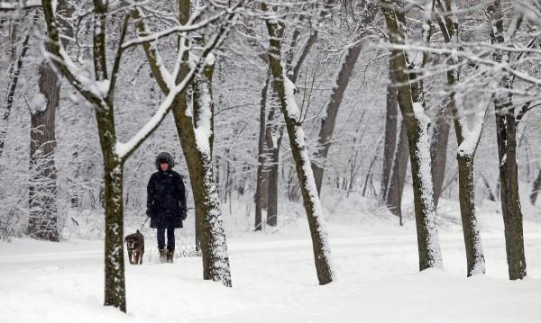Зимата идва, но топла и мека! Снежни бедствия на хоризонта няма