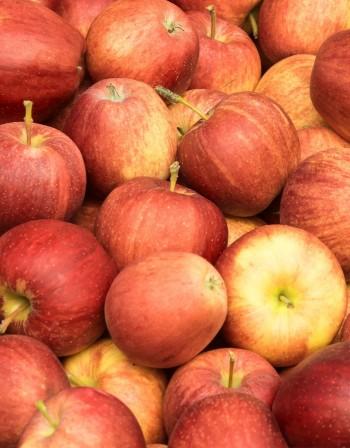 Ръст в производството на плодове? Не, просто фермерите излязоха на светло