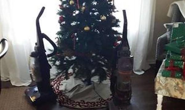 Коледа с домашни любимци