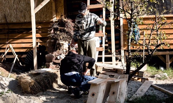 Фермерите измайсториха къщи за птици на Витоша