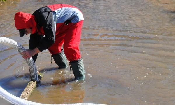 Дъждът не спира: Наводнени мазета и пълни шахти в София