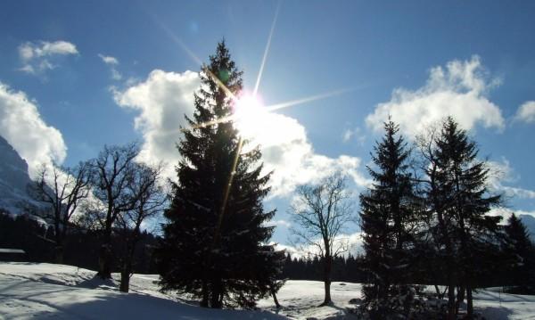 Вторникът и срядата: Слънчеви! От четвъртък – облаци