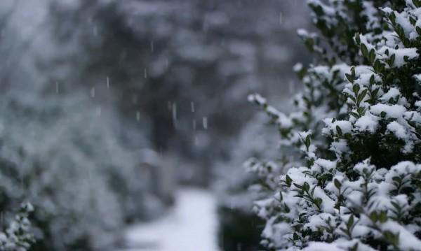 Студ и сняг цяла седмица, градусите падат до -12
