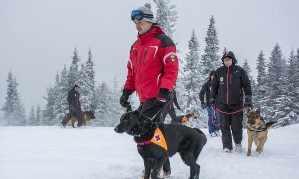 Спасиха двама изгубени сноубордисти на Витоша и Боровец