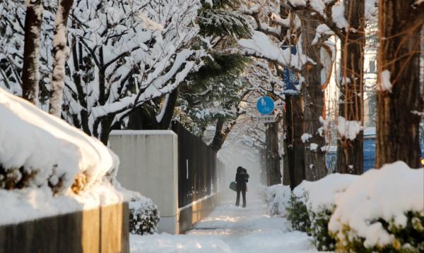 2000 японци нощуваха във влакове заради силен снеговалеж