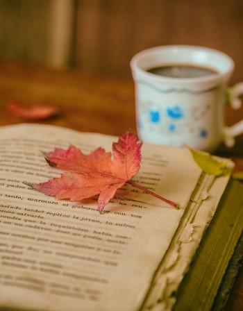Трилъри и романтика... Българите четат все повече