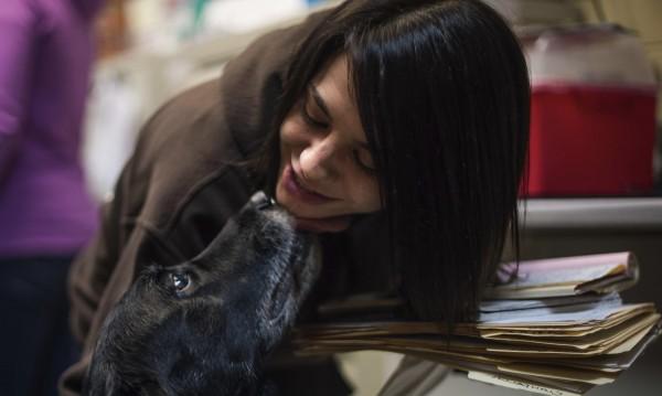 След 10 години: Семейство се събра с изчезналото си куче