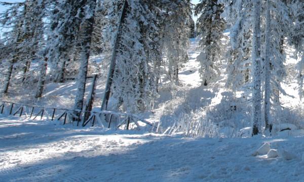 Детето, ударено на писта от сноубордист, е в кома