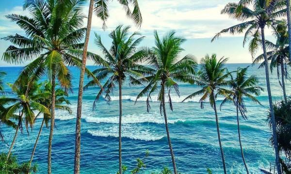 Раят на Земята: Шри Ланка! Какво да видим там?