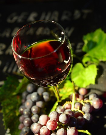 Българското вино с шанс да завоюва достойно място в света