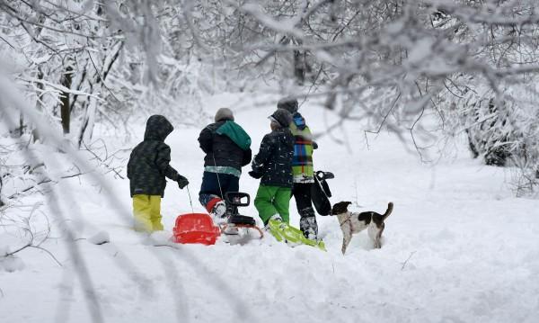 В села и градове: Дървена ваканция заради снега