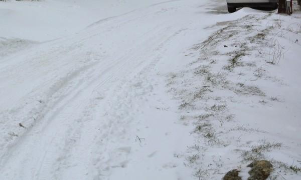 Заради снега и студа: 961 школа затвориха врати