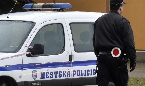 Шест жертви при взрив в химически завод в Чехия
