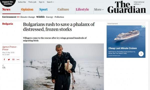 От Facebook до Guardian: Спасителят на щъркели в световните медии