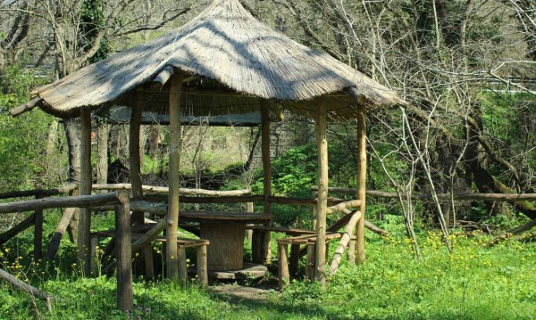 Ропотамо: Джунгла в България! Какво можем да видим?
