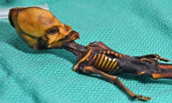 """Мистерия от Чили: """"Извънземното"""" от Атакама – мъртво момиченце"""