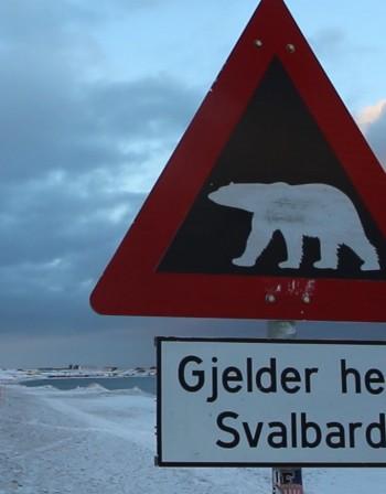 Нет и на смразяваща Арктика? Възможно е!