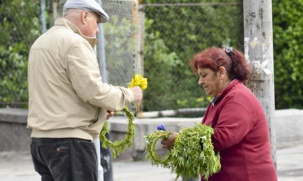 Купувайте цветя и клонки от регламентирани търговци!