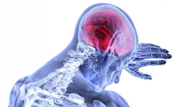 Доказано! Мозъчните клетки не умират с възрастта!