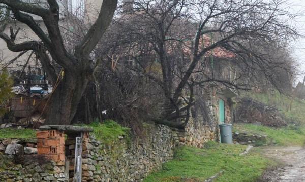 В Северозапада: Просперират селата с роми, тези с българи пропадат!