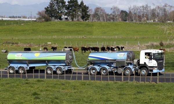Производството на мляко в Нова Зеландия замърсява... околната среда