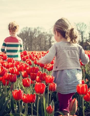 Пролетна умора! Как да презаредим тялото си?
