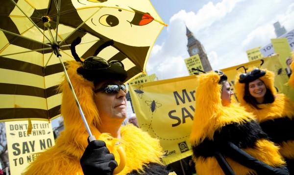 ЕС забрани три пестицида, убивали пчелите