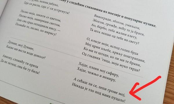 В Сърбия: Текст на песен на Цеца – в учебник!