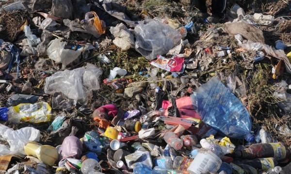 Пластмасата – убиецът на планетата Земя