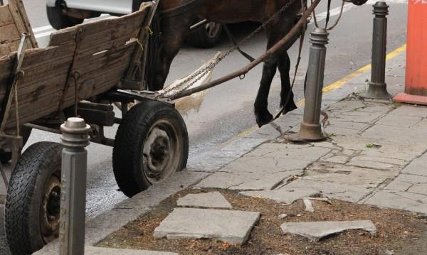 14-годишен каруцар блъсна баба и избяга