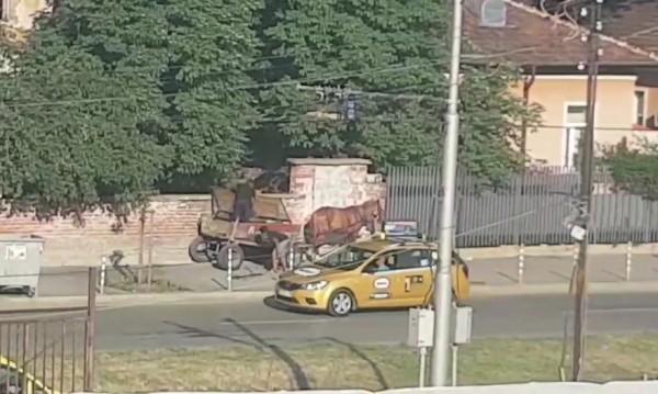 Едно по едно – в каруцата! Без да бързат, роми разграбват имот в София