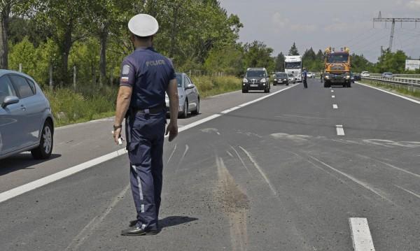 Държавата плаща на шофьор заради катастрофа с... глигани