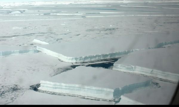 Антарктическият лед се топи много бързо. Какво следва?