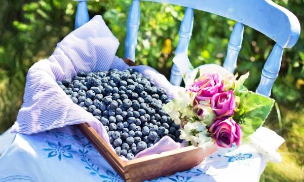 6 храни, предпазващи от вредните UV-лъчи