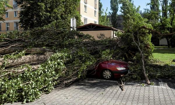 Буря и проливни дъждове взеха жертва в Полша