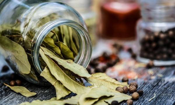 За какво помага маслото от дафинов лист?