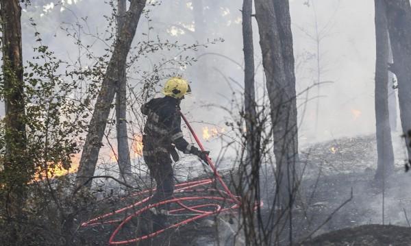 """Пожар горя в парк """"Бакаджика"""" в Ямбол"""