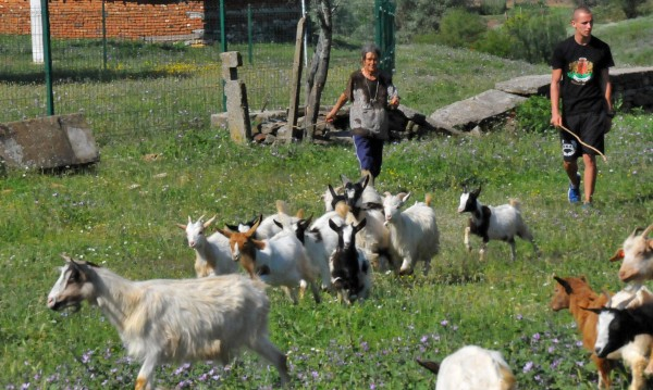 Селото на баба Дора под блокада: Полицията изведе доброволците
