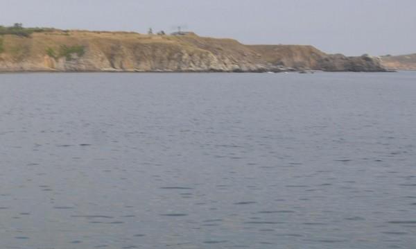Зловеща гледка край Поморие: Разложен труп, висящ на дърво