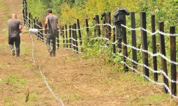 Заради чумата: Засилени мерки и по границата с Гърция