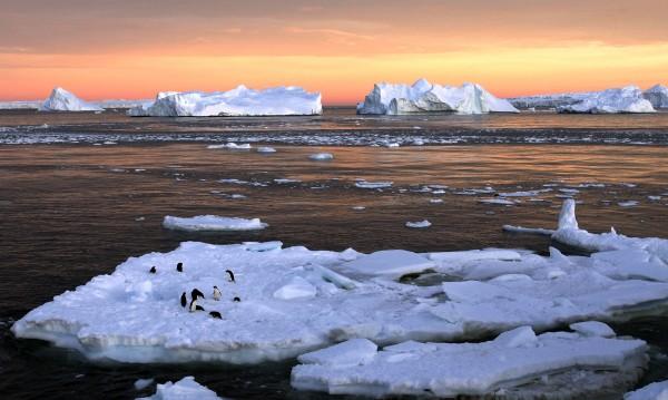 Учени от Антарктида: Има признаци за глобална катастрофа!