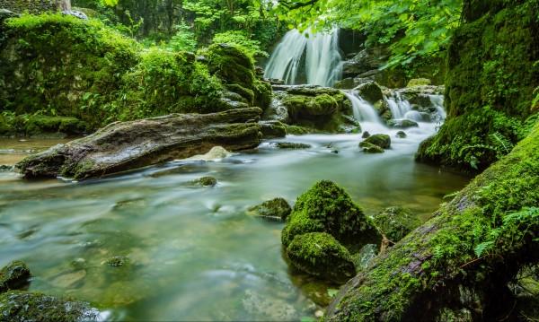 Топ 6 зодии: Най-големите любители на природата