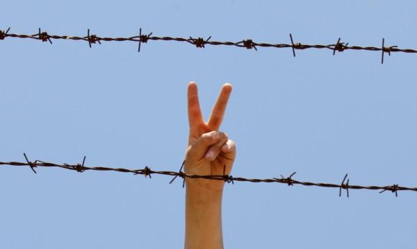Една малка държава емигрира на Запад! Мирно и тихо завоевание!