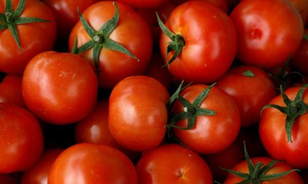 3847 сорта! Бивш полицай с невероятна колекция домати