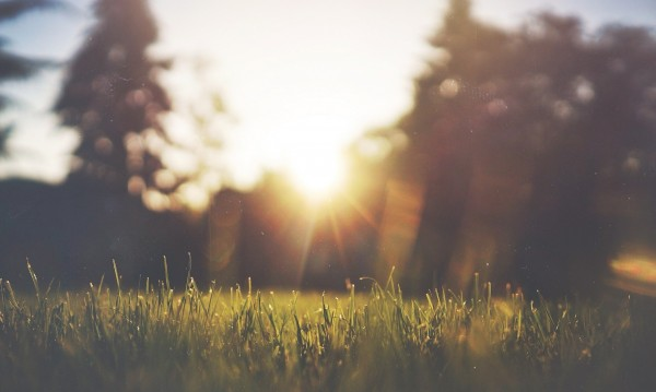 В петък - слънчево време, на места ще превали