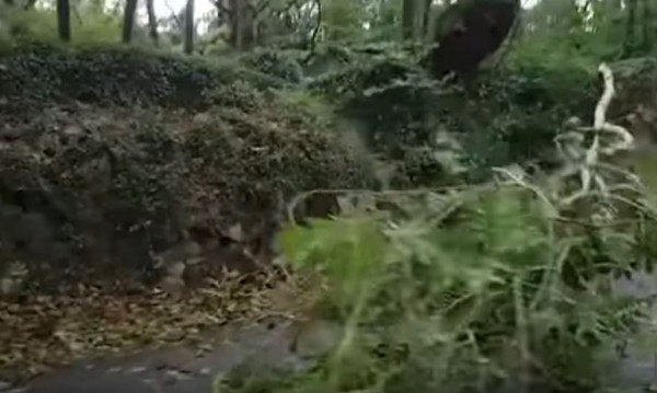 """Бурята """"Али"""" отнесе каравана на ирландка. Тя загина"""